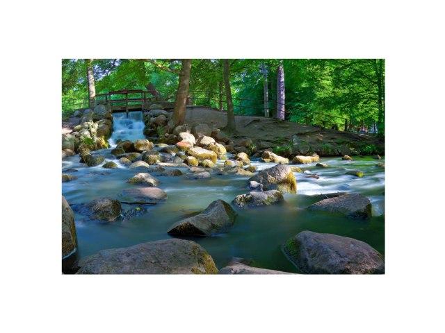 creek-FL